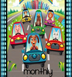 monthlytraffic
