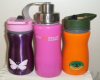 Insulated Stainless Water Bottles