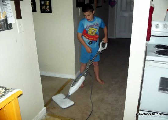 Steam Mops For Cleaning