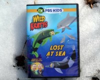 Best DVDs For Young Children